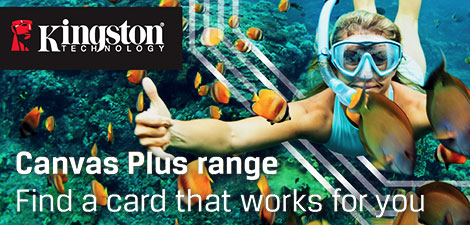 Kingston Canvas Plus Range - Memory