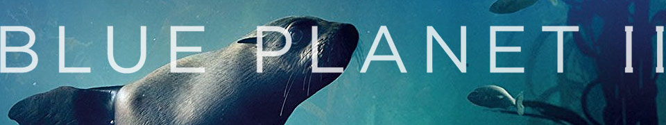 Blue Planet 2 - TV Series