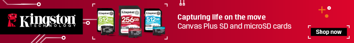 Kingston Canvas Plus