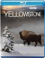 Yellowstone Tales from the Wild (Blu-Ray) BBCBD0046