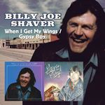 Billy Joe Shaver - When I Get My Wings/Gypsy Boy cover